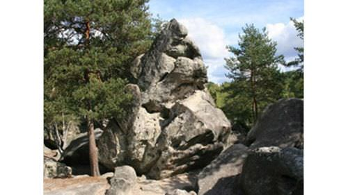 Fontainebleau rock climbing near the gites